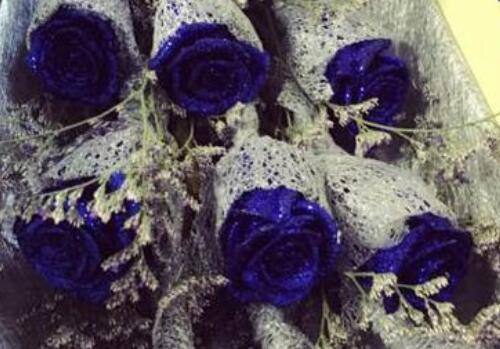 蓝色妖姬的花语是什么?大概多少钱一朵?
